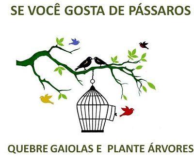 Educar a Ação - Pássaros e Árvores