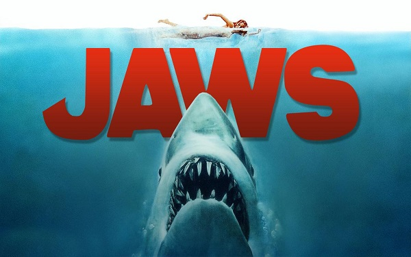 Shark Thank