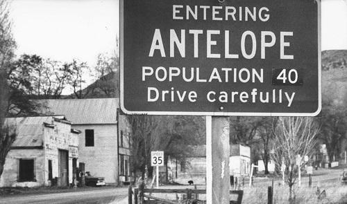 Antelope - Oregon - Melhor morto