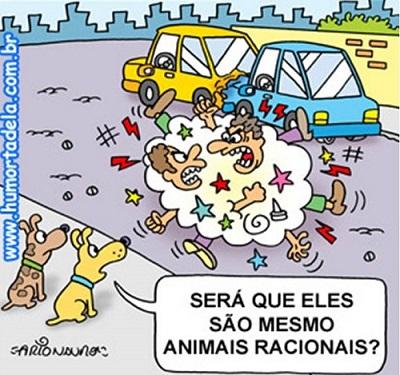 Motorista Bom - Humortadela