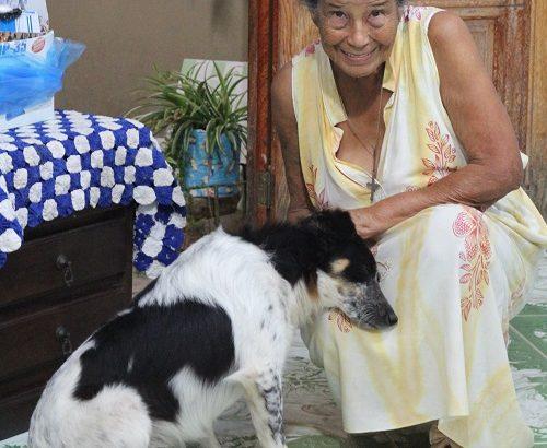 Dona Luzia e Mon ami - Foto: Evandro Oliveira